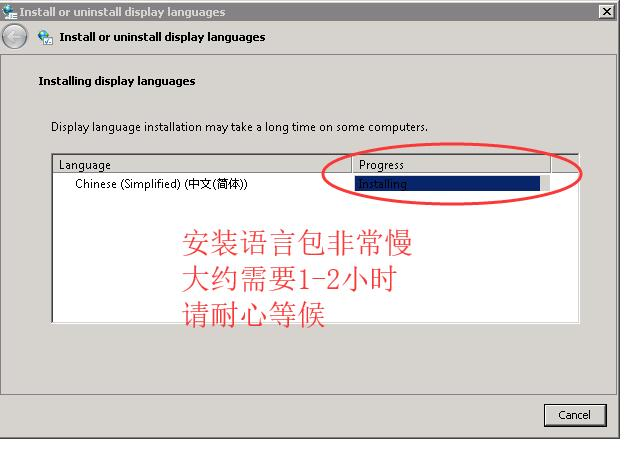 ioZoom英文版windows sever 2008系统安装中文语言包教程插图9