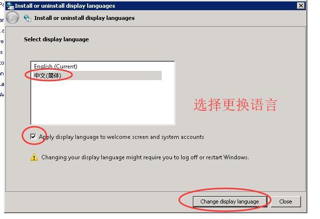 ioZoom英文版windows sever 2008系统安装中文语言包教程插图11
